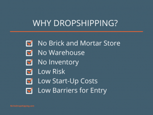Figure 1 Why Dropshipping