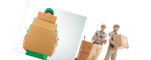 NicheDropshipping BAnner 2