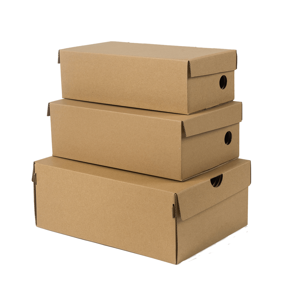 NicheDropshipping_Shoes Box