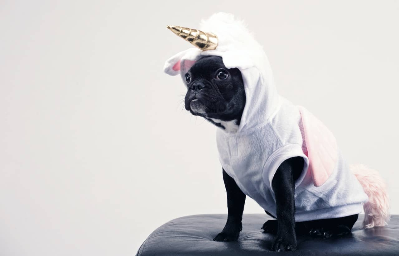 2-Why Halloween Costumes Are a Great Niche for Your Online Business