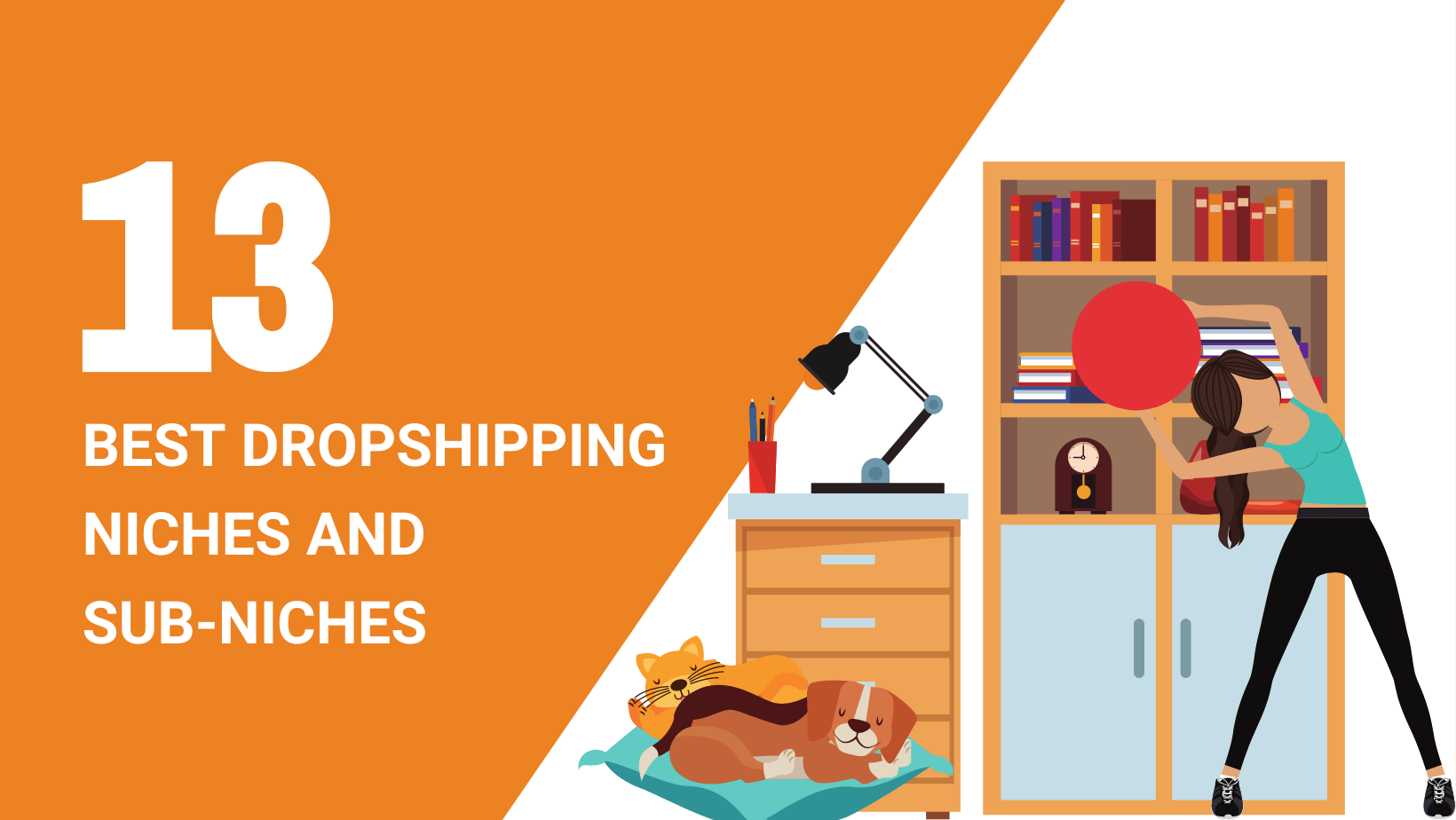 13 BEST DROPSHIPPING NICHES AND SUB NICHES