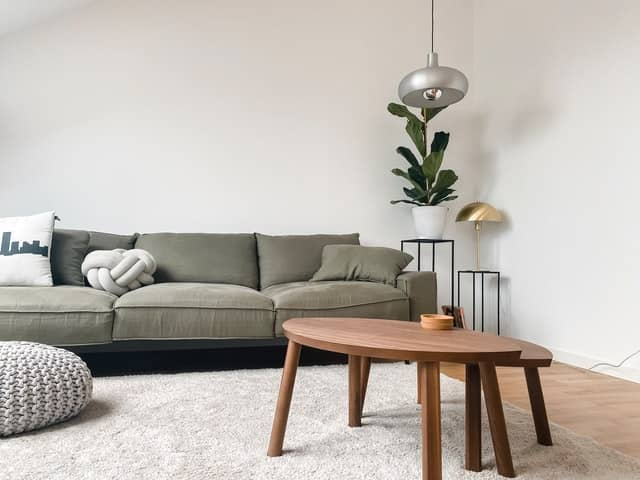 Home Decorations and Furniture Evergreen Products